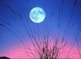 La Lune : l'instinct, les émotions.