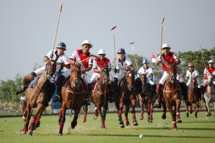 Un sport Sagittaire, le polo